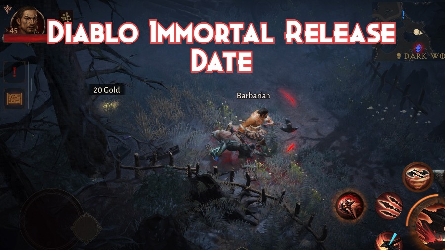 Diablo Immortal Release Date and Everything You Need to Know About It